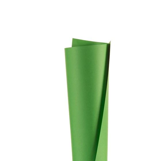 Papel Colorplus Verde Buenos Aires 180g Pct c/10